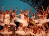 ecole-de-ballet-don-chisciotte-2011-q_0
