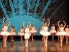 ecole-de-ballet-don-chisciotte-2011-s