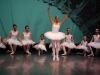 ecole-de-ballet-don-chisciotte-2011-x