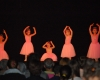 ecole de ballet carpi - jewel - piazzale re Astolfo 2014 (17)