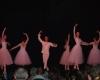 ecole de ballet carpi - jewel - piazzale re Astolfo 2014 (8)