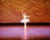 ecole de ballet -carpi- jewels- 1 parte (177)
