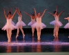 ecole de ballet -carpi- jewels- 1 parte (300)