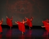 ecole de ballet -carpi- jewels- 1 parte (58)