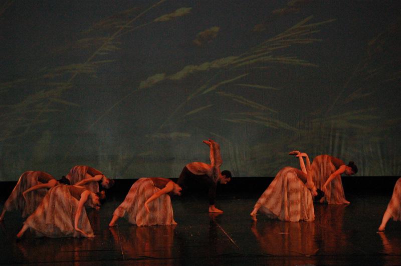 ecole de ballet- carpi - jewels 2 parte (6)