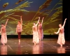 ecole de ballet- carpi - jewels 2 parte (8)