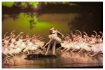 ecole de ballet - 35