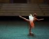 Paquita – 2015 – ecole de ballet - carpi -spettacolo   (157)