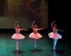 Paquita – 2015 – ecole de ballet - carpi -spettacolo   (204)