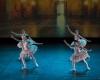 Paquita – 2015 – ecole de ballet - carpi -spettacolo   (262)