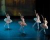 Paquita – 2015 – ecole de ballet - carpi -spettacolo   (266)