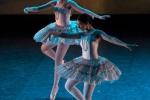Paquita – 2015 – ecole de ballet - carpi -spettacolo   (258)