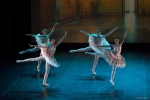 Paquita – 2015 – ecole de ballet - carpi -spettacolo   (265)