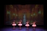 Paquita – 2015 – ecole de ballet - carpi -spettacolo   (329)
