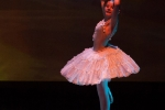 Paquita – 2015 – ecole de ballet - carpi -spettacolo   (343)