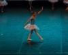 Paquita – 2015 – ecole de ballet - carpi -spettacolo   (382)