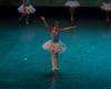 Paquita – 2015 – ecole de ballet - carpi -spettacolo   (383)