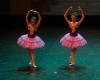 Paquita – 2015 – ecole de ballet - carpi -spettacolo   (391)