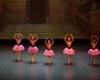 Paquita – 2015 – ecole de ballet - carpi -spettacolo   (394)