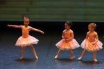 Paquita – 2015 – ecole de ballet - carpi -spettacolo   (448)