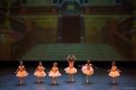 Paquita – 2015 – ecole de ballet - carpi -spettacolo   (464)
