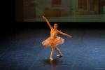 Paquita – 2015 – ecole de ballet - carpi -spettacolo   (481)