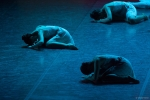 Paquita – 2015 – ecole de ballet - carpi -spettacolo   (753)