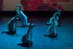 Paquita – 2015 – ecole de ballet - carpi -spettacolo   (755)