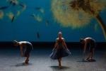 Paquita – 2015 – ecole de ballet - carpi -spettacolo   (820)