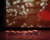 Paquita – 2015 – ecole de ballet - carpi -spettacolo   (880)