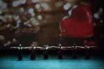 Paquita – 2015 – ecole de ballet - carpi -spettacolo   (864)