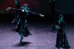 Paquita – 2015 – ecole de ballet - carpi -spettacolo   (891)