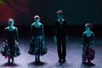 Paquita – 2015 – ecole de ballet - carpi -spettacolo   (898)
