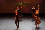 Paquita – 2015 – ecole de ballet - carpi -spettacolo   (923)