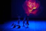 Paquita – 2015 – ecole de ballet - carpi -spettacolo   (929)