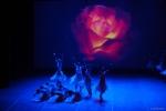 Paquita – 2015 – ecole de ballet - carpi -spettacolo   (930)