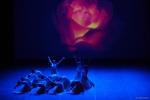 Paquita – 2015 – ecole de ballet - carpi -spettacolo   (931)