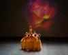 Paquita – 2015 – ecole de ballet - carpi -spettacolo   (936)