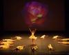Paquita – 2015 – ecole de ballet - carpi -spettacolo   (947)
