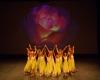 Paquita – 2015 – ecole de ballet - carpi -spettacolo   (950)