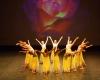 Paquita – 2015 – ecole de ballet - carpi -spettacolo   (952)