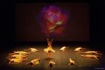 Paquita – 2015 – ecole de ballet - carpi -spettacolo   (948)