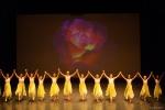 Paquita – 2015 – ecole de ballet - carpi -spettacolo   (956)